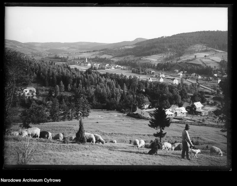Obiekt Widok na dolinę Wisły. z jednostki Wisła