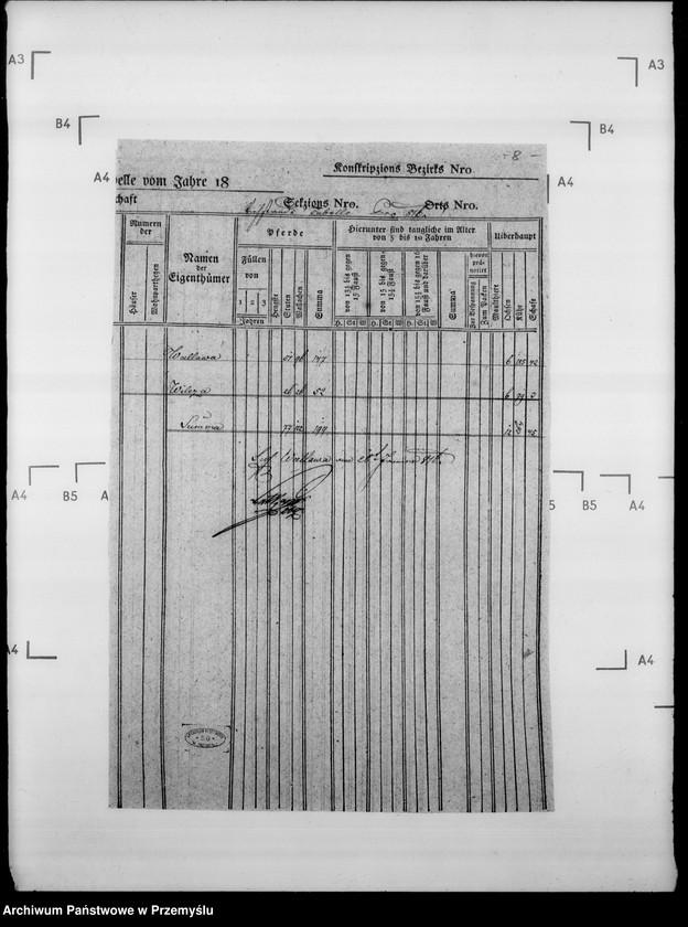 """Obraz 12 z jednostki """"Sumariusze miejscowe [spisy ludności i spisy koni dla celów wojskowych]"""""""