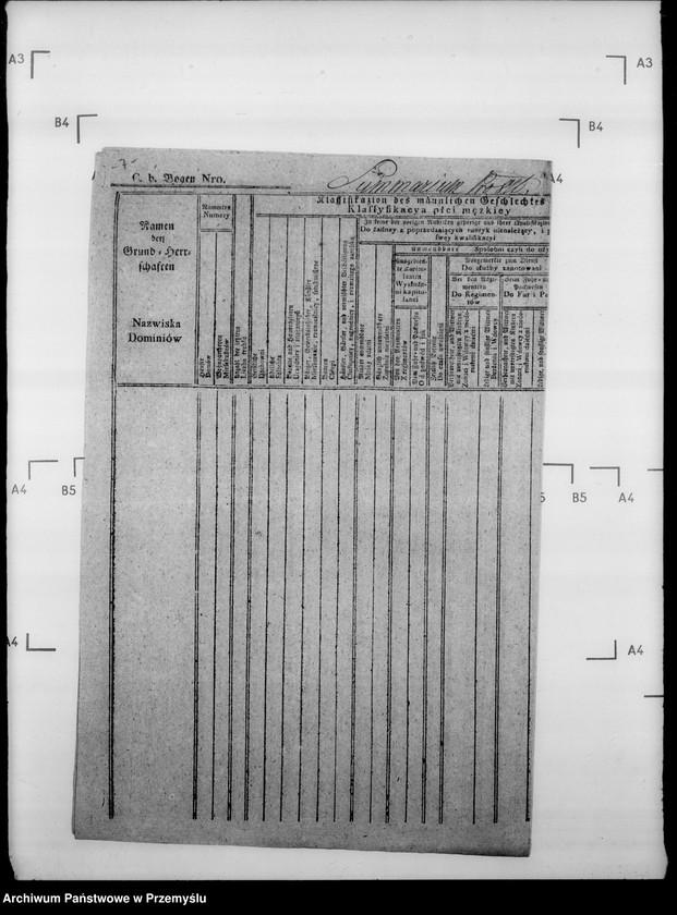 """Obraz 11 z jednostki """"Sumariusze miejscowe [spisy ludności i spisy koni dla celów wojskowych]"""""""