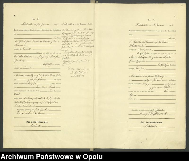 """Obraz 6 z jednostki """"Urząd Stanu Cywilnego Kobylice Księga Urodzeń Rok 1913"""""""