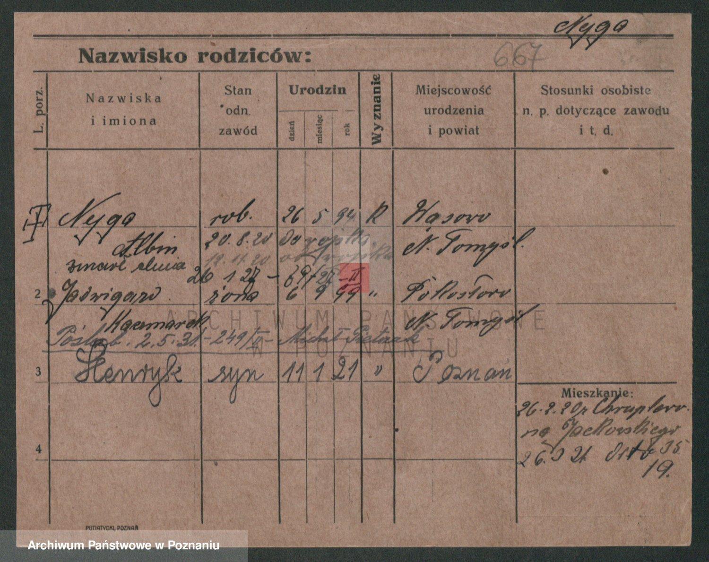 Skan z jednostki: Nowicz - Nyul