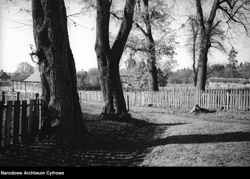 Obiekt Droga przez wieś i zabudowania. W oddali wieże cerkwi. z jednostki Białowieża