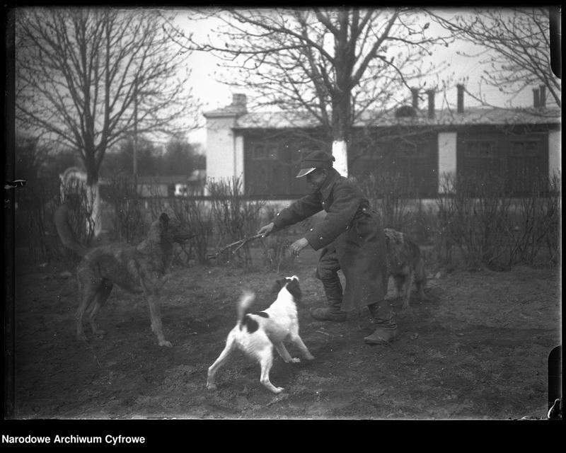 """Obraz 2 z jednostki """"Młody strzelec z psami na terenie koszar przy ulicy 29 Listopada w Warszawie"""""""