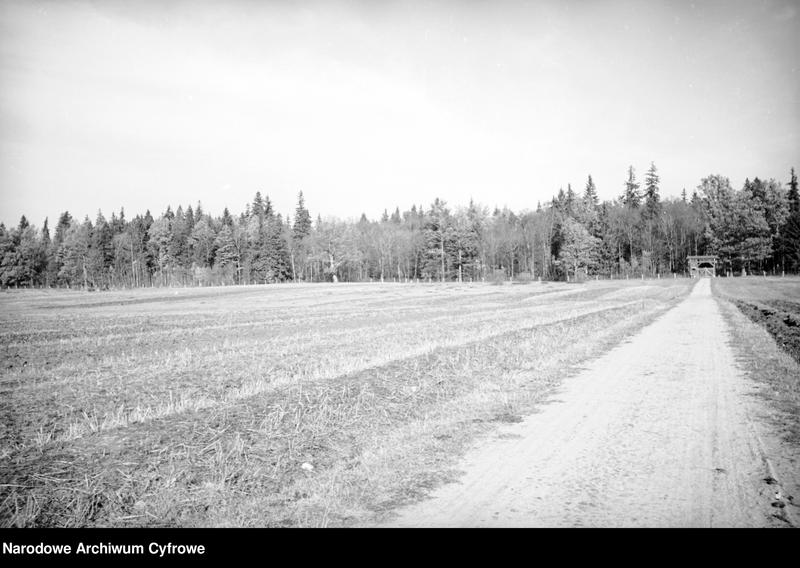 Obiekt Polna droga. W oddali park narodowy i widok bramy wjazdowej do parku. z jednostki Białowieża