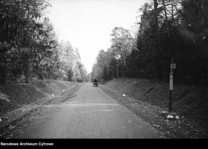 Obiekt Droga przez las. Wóz konny w oddali. z jednostki Białowieża
