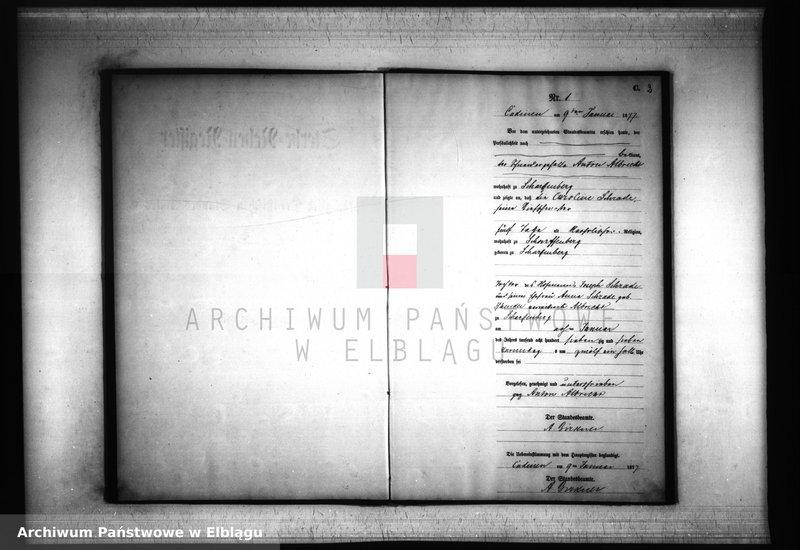 """Obraz z jednostki """"Księga zgonów 1877 rok"""""""