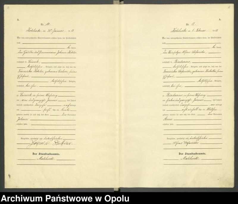"""Obraz 8 z jednostki """"Urząd Stanu Cywilnego Kobylice Księga Urodzeń Rok 1913"""""""