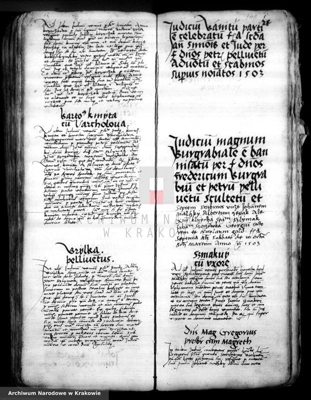 """Obraz 1 z kolekcji """"Staropolskie akta miasta Bochni"""""""