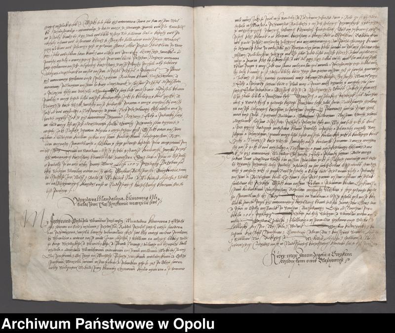 """image.from.collection.number """"Księgi ziemskie księstwa opolsko-raciborskiego"""""""