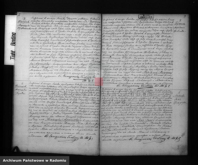 "Obraz z jednostki ""Duplikat aktov rodivšihsâ, brakosočetavšihsâ i ob umerših prihoda Lipsko 1875 goda"""