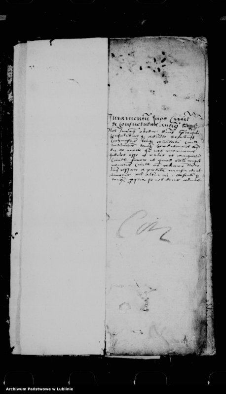 "Obraz 4 z jednostki ""Acta seu liber inscriptionum villae Conopnicza --"""
