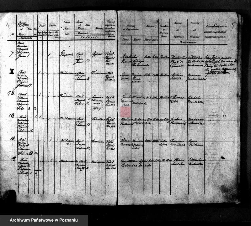 "Obraz z jednostki ""Liber baptisatorum"""