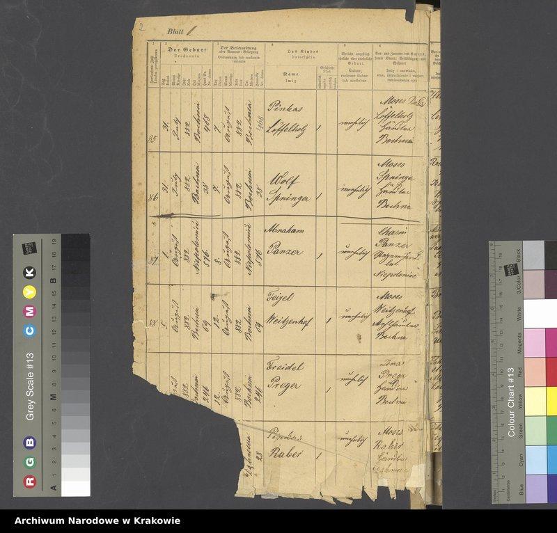 """Obraz z jednostki """"Księga metrykalna urodzonych od rocznika 1882 do 1889. Tom II"""""""