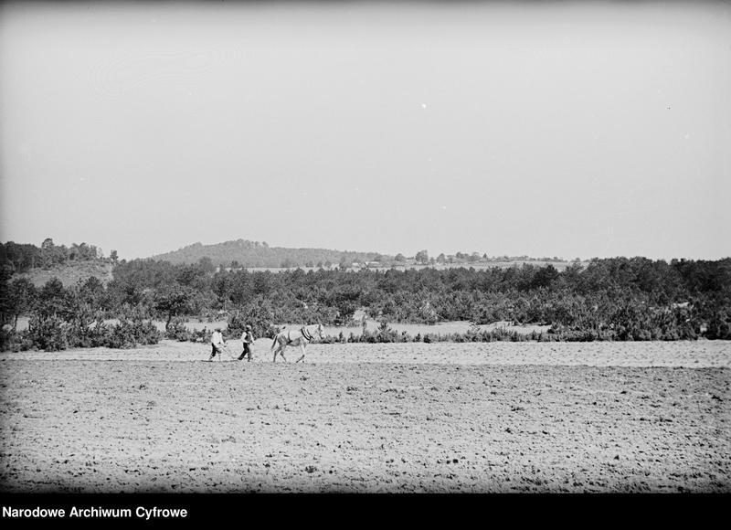 Obiekt Chłopi podczas orania pola. z jednostki Częstochowa