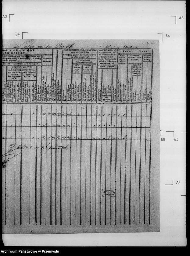 """Obraz 10 z jednostki """"Sumariusze miejscowe [spisy ludności i spisy koni dla celów wojskowych]"""""""