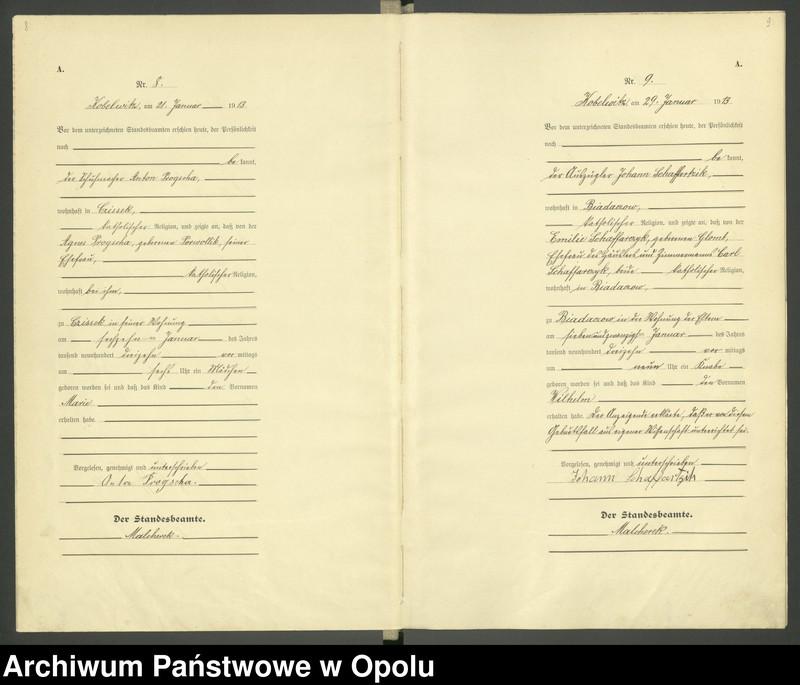 """Obraz 7 z jednostki """"Urząd Stanu Cywilnego Kobylice Księga Urodzeń Rok 1913"""""""