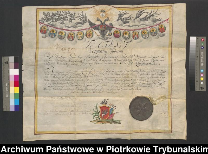 """Obraz z jednostki """"Patent Wołyńskiej Guberni o potwierdzeniu szlachectwa Filipa Czaykowskiego"""""""