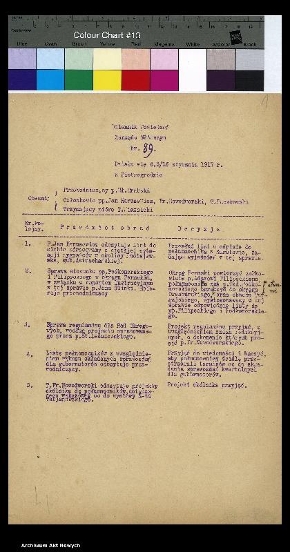 """Obraz z jednostki """"Dziennik posiedzeń Zarządu Głównego CKO od nr. 89-179 za rok 1917-1918."""""""