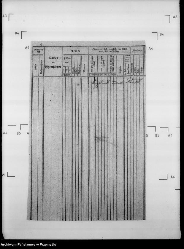 """Obraz 13 z jednostki """"Sumariusze miejscowe [spisy ludności i spisy koni dla celów wojskowych]"""""""