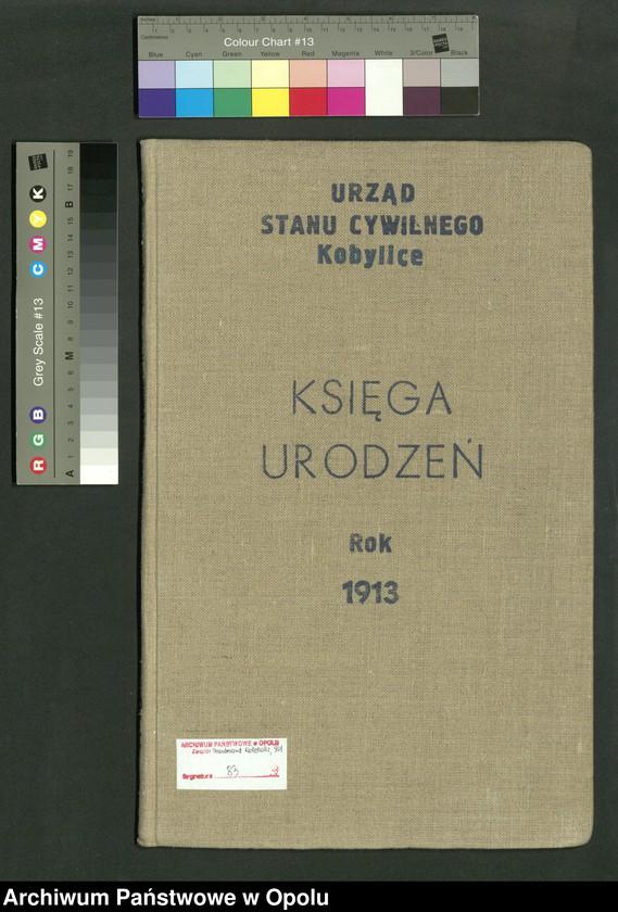 """Obraz 2 z jednostki """"Urząd Stanu Cywilnego Kobylice Księga Urodzeń Rok 1913"""""""