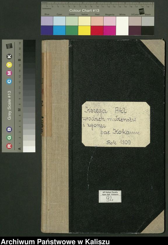 """Obraz 2 z jednostki """"Księga akt urodzeń, małżeństw i zgonu (duplikat)"""""""