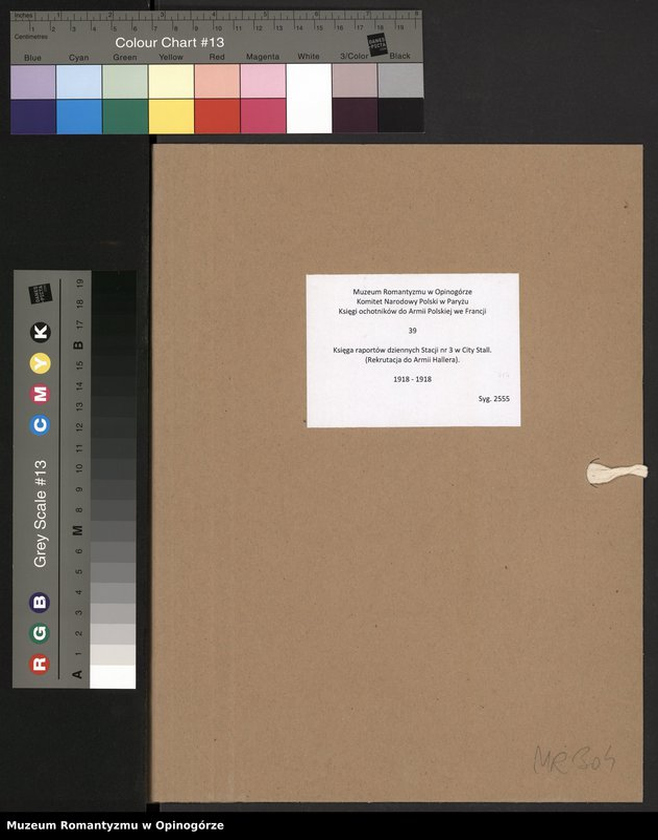 """Obraz 2 z jednostki """"Księga raportów dziennych Stacji nr 3 w City Stall. (Rekrutacja do Armii Hallera)."""""""