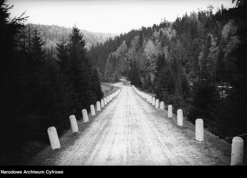 Obiekt Widok leśnej drogi. z jednostki Wisła