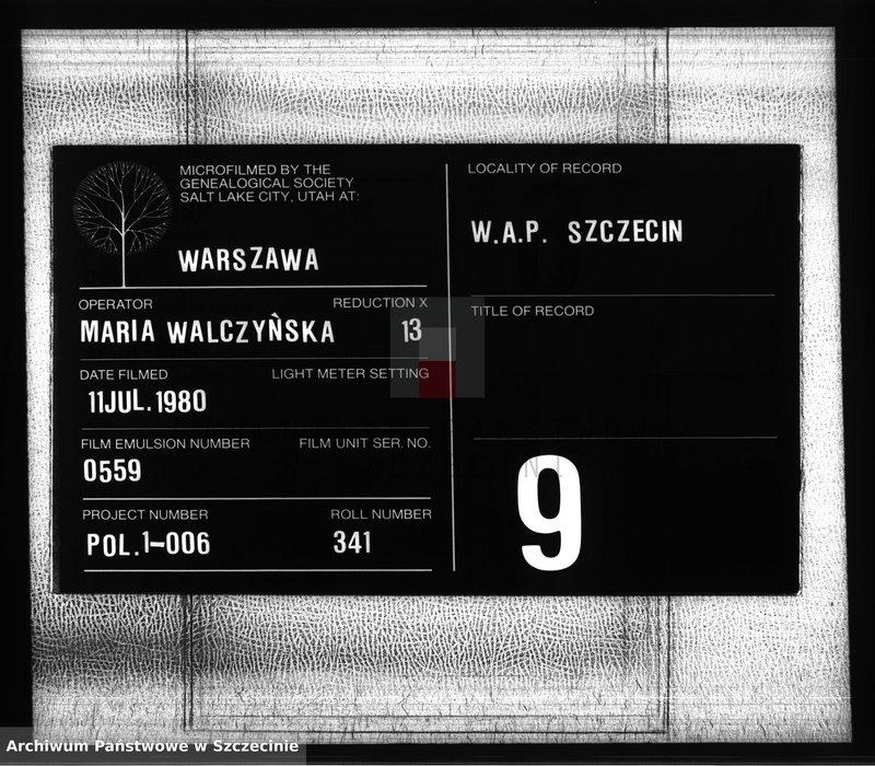 """Obraz z zespołu """"Urząd Stanu Cywilnego w Żółwiej Błoci"""""""
