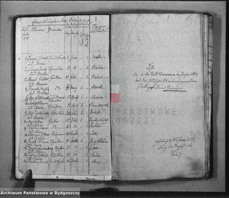 """Obraz z jednostki """"Duplicate der Civil Standes Bücher der Juden Gemeinde zu Trzemeszno"""""""