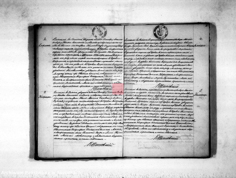 "Obraz z jednostki ""Duplikat aktov rodivšichsja, brakosočetavšichsja i umeršich vejsejskogo rimsko-katoličeskogo prichoda na 1875 god"""