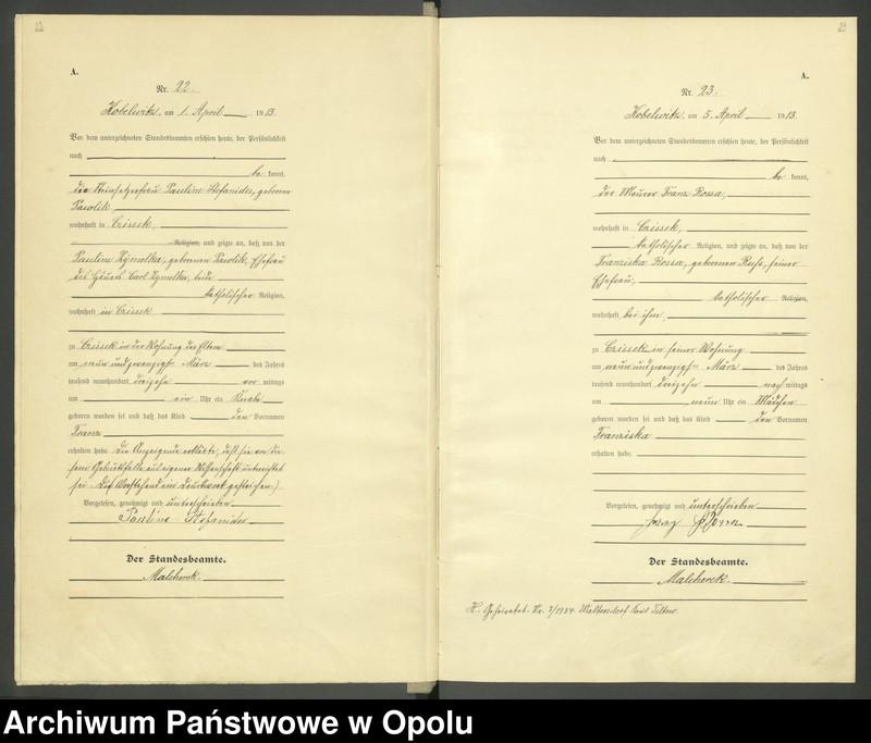 """Obraz 14 z jednostki """"Urząd Stanu Cywilnego Kobylice Księga Urodzeń Rok 1913"""""""
