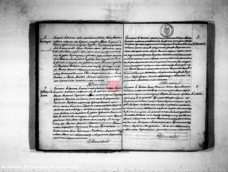 "image.from.unit ""Duplikat rimsko-katoličeskogo vejsejskogo prichoda o rodivšichsja, umeršich i brakosočetavšichsja na 1874 god"""