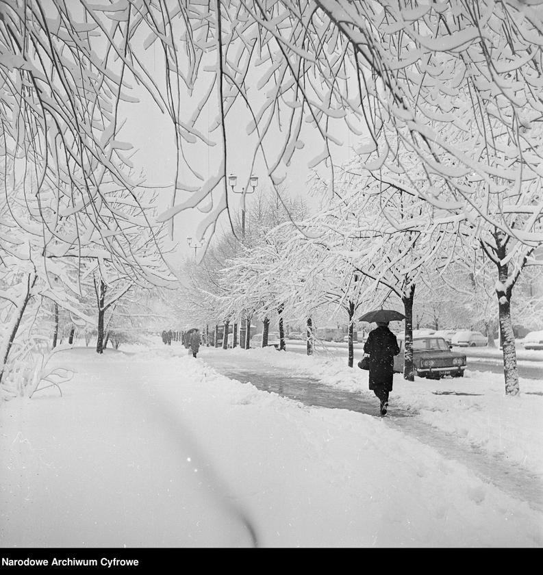 """Obraz 10 z kolekcji """"Zima w mieście"""""""