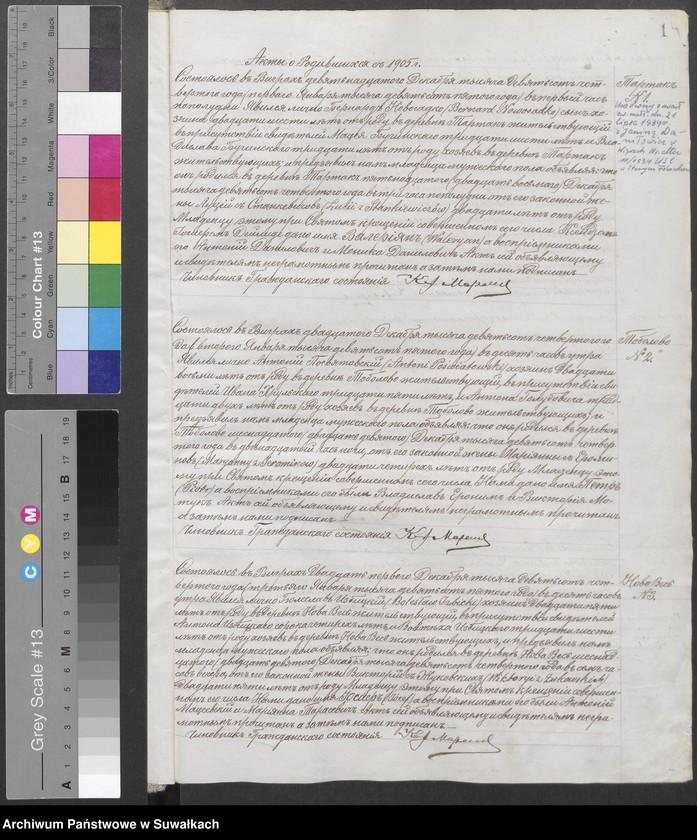 """Obraz z jednostki """"Ksiąga urodzeń, małżeństw i zgonów za rok 1905"""""""