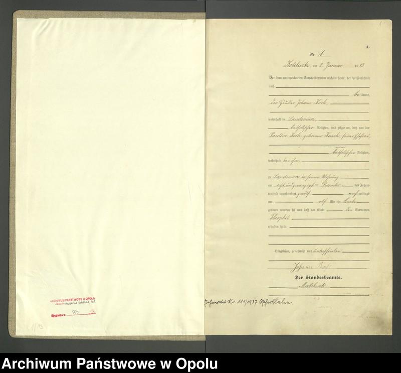 """Obraz 3 z jednostki """"Urząd Stanu Cywilnego Kobylice Księga Urodzeń Rok 1913"""""""