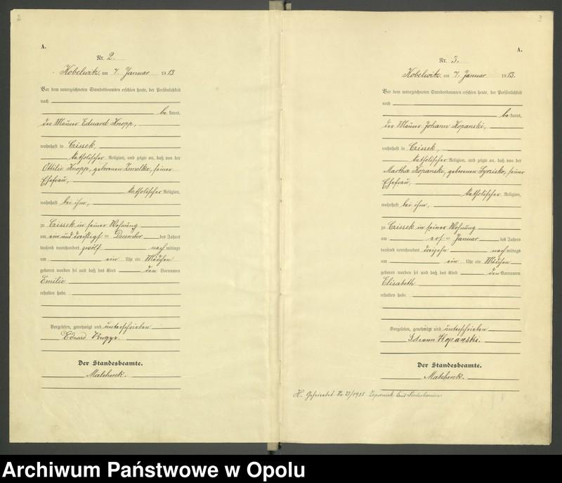 """Obraz 4 z jednostki """"Urząd Stanu Cywilnego Kobylice Księga Urodzeń Rok 1913"""""""