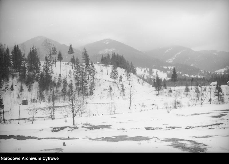 Obiekt Górzysty krajobraz huculskiej wsi. z jednostki Huculskie typy ludowe