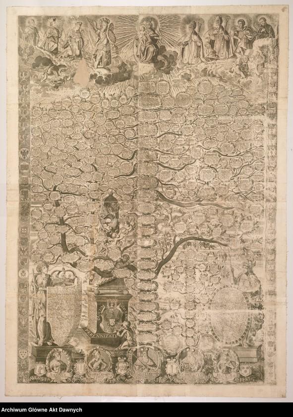 """Obraz z jednostki """"Wykres potomków (w układzie poziomym, wystylizowany na drzewo)  Radziwiłłów."""""""