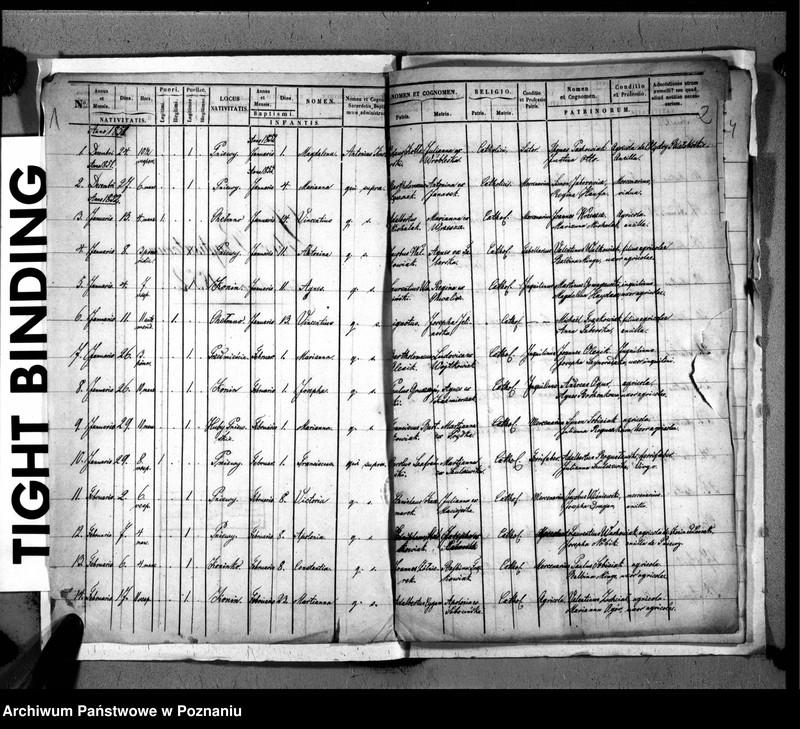 """Obraz z jednostki """"Liber baptisatorum, copulatorum, mortuorum"""""""