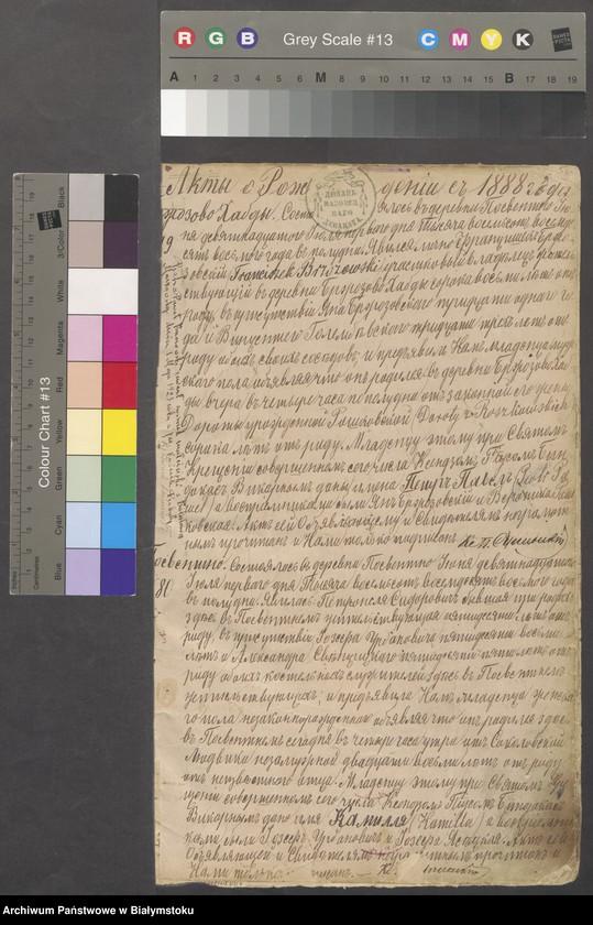 """Obraz z jednostki """"[Księga urodzeń za lata 1888-1896]"""""""