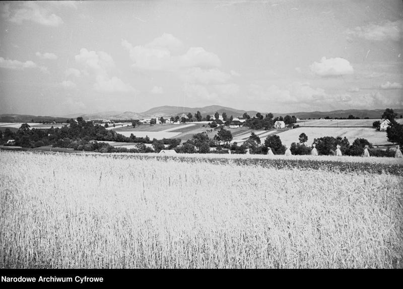 Obiekt Panorama pół i łąk. z jednostki Krajobraz śląski
