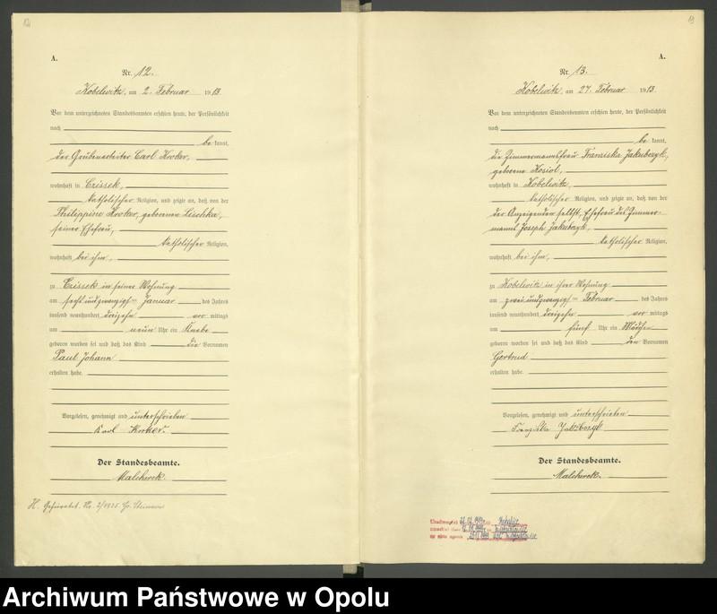 """Obraz 9 z jednostki """"Urząd Stanu Cywilnego Kobylice Księga Urodzeń Rok 1913"""""""