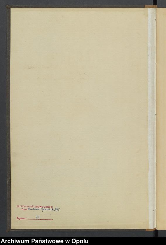 """Obraz z jednostki """"Geburts-Neben-Register Standesamts Jeroltschütz pro 1885"""""""