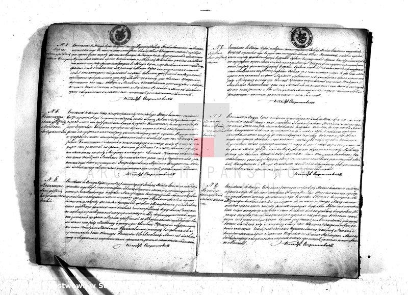 """Obraz z jednostki """"Duplikat aktov graždanskago sostojanija rimsko-katoličeskago prichoda Sereje 1873 goda"""""""