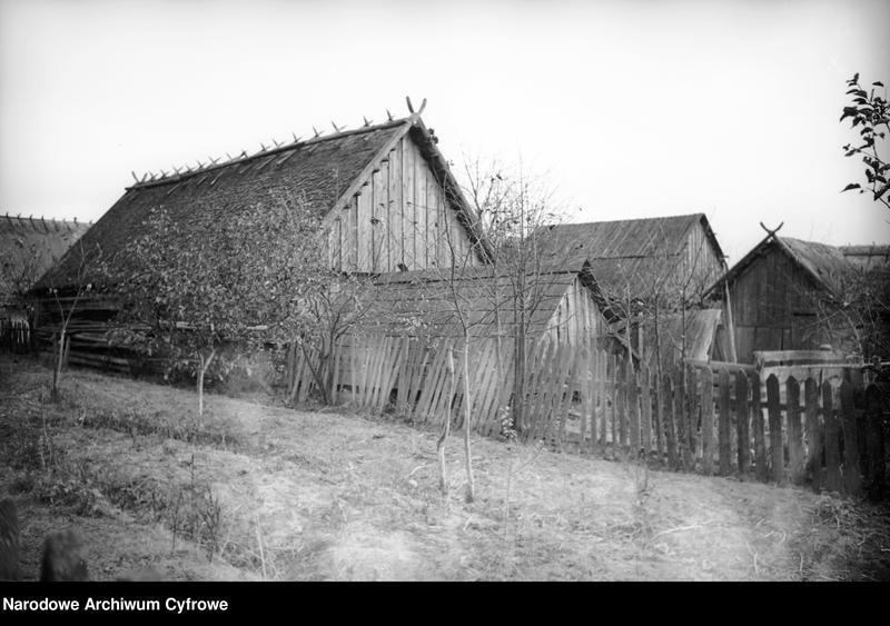 Obiekt Zabudowania gospodarcze. Dachy domów wiejskich. z jednostki Białowieża