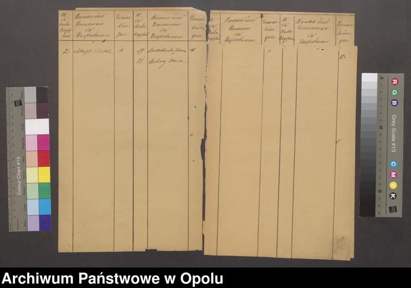 """Obraz z jednostki """"Alphabetisches Verzeichniss zum Sterberegister des Standesamtes Ziegenhals [1874-1884]"""""""