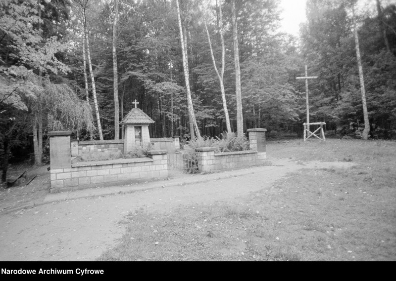 "image.from.unit ""Plener w Starachowicach"""